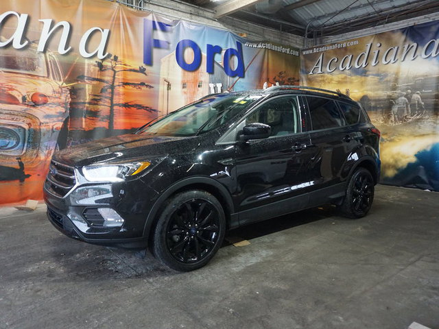 The 2019 Ford Escape SE FWD photos