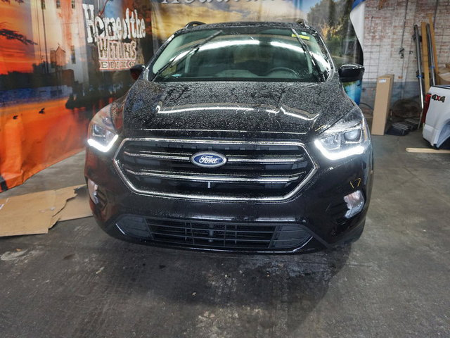 2019 Ford Escape SE FWD photo